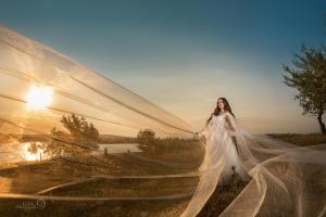 galerie nunta 033