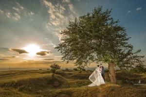 galerie nunta 053